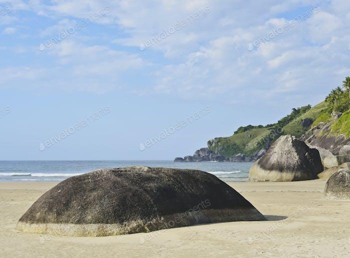 Bonete on Ilhabela Island, Brazil