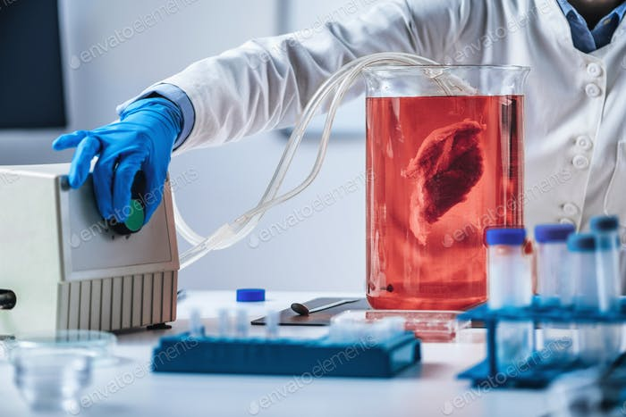 Biotechnology Process with Synthetic Meat Grown in the Laboratory