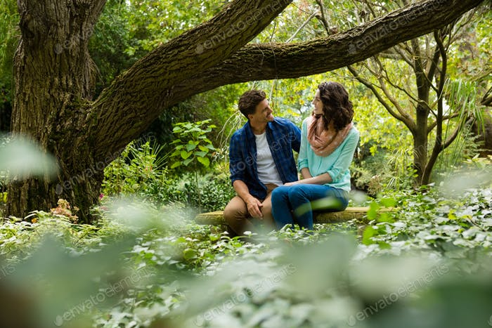 Romantic couple interacting with each other in garden
