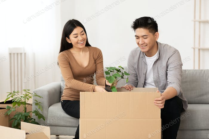 Asian man and woman packing plant in cardboard boxes