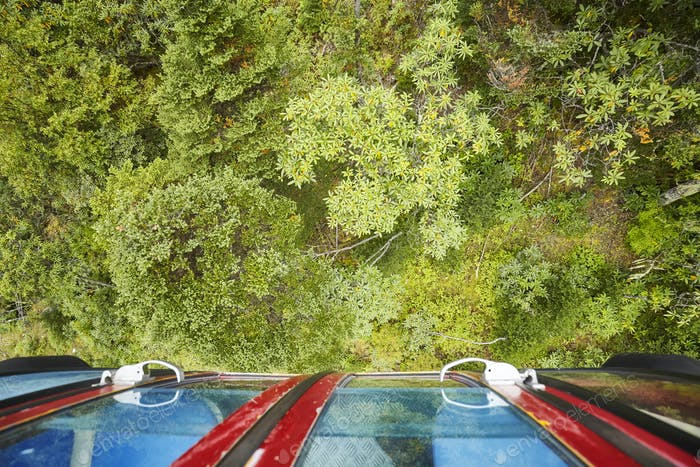 Looking down on a forest from cable car