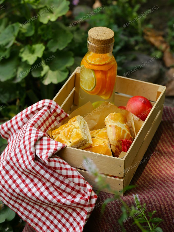Picnic - Pastel de Carne y Limonada