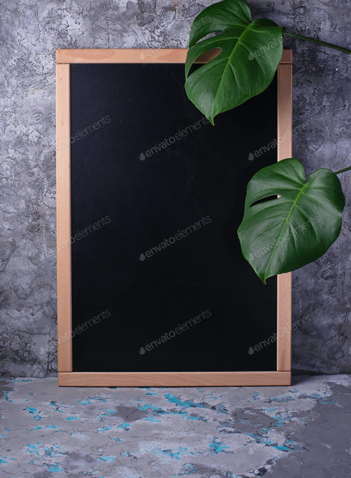 Empty chalkboard  and monstera leaves