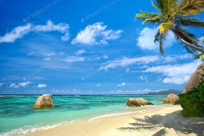 Paradise Seychelles beach