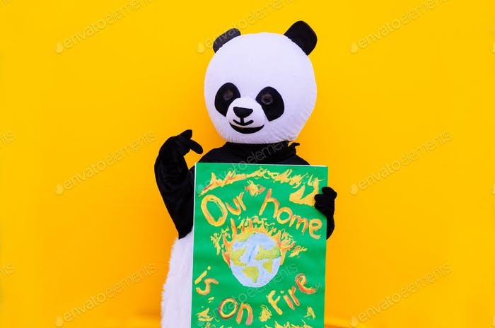Панда талисман с экологическим сообщением. Концепция о людях, активизме и окружающей среде