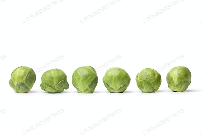 Row of fresh Brussel sprouts