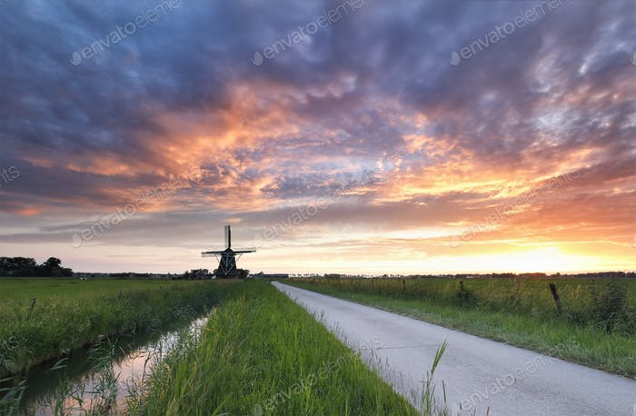 dramatic purple sunset in Dutch countryside with windmill