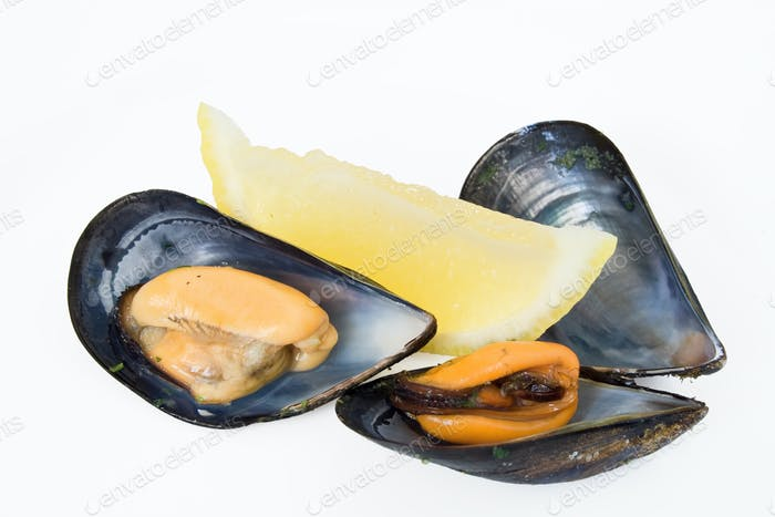 two mussels with lemon
