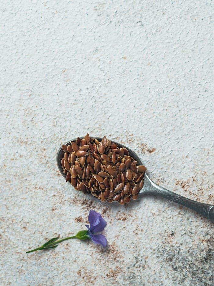 Leinsamen und Leinenblume mit Kopierraum