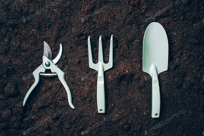 Gardening tools and utensils on soil background. Top view with copy space. Pruner, rake, shovel for