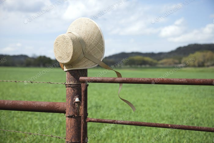 Ladies Bonnet on Fence Post by Field and Hills in Texas
