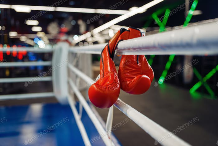 Pair of red boxing gloves hanging on a ropes