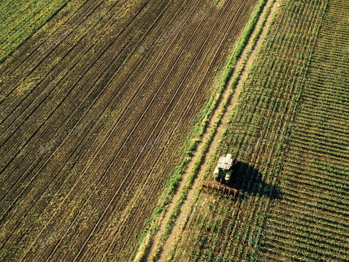 Tractor cultivating corn crop field, aerial view