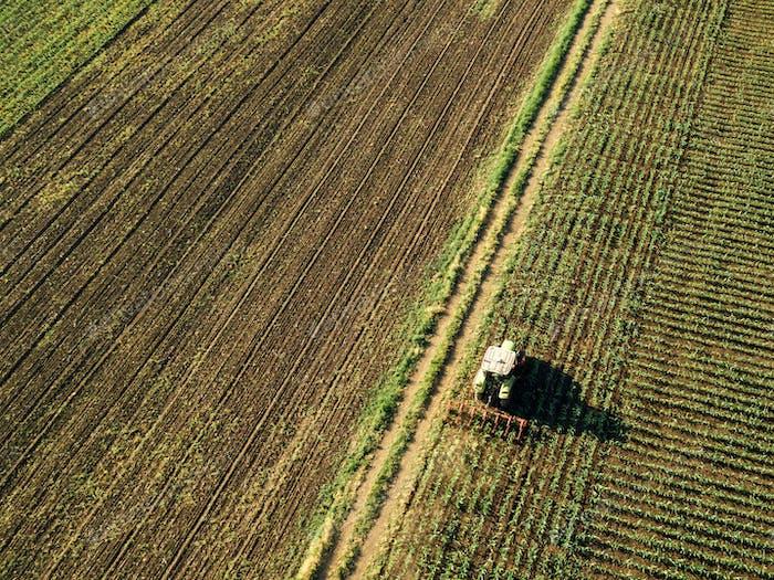 Traktoranbau Maisfeld, Luftbild