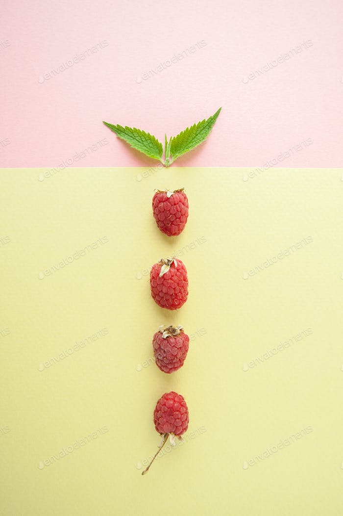 Ripe raspberries and fresh mint are served on a pastel yellow-gr