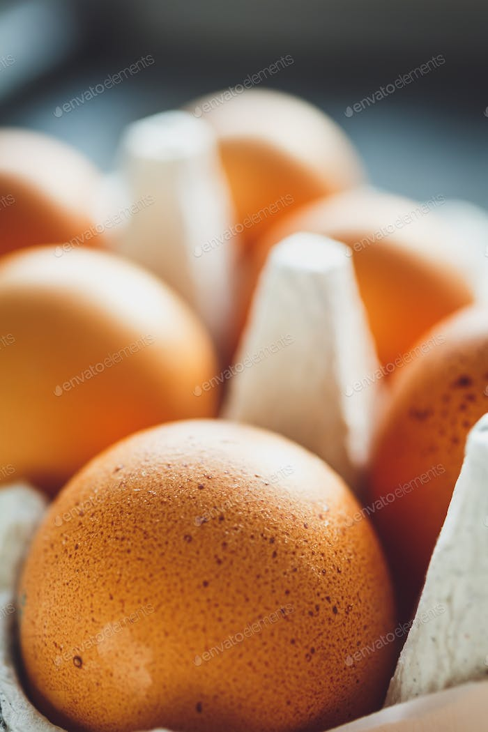 Chicken eggs in egg tray