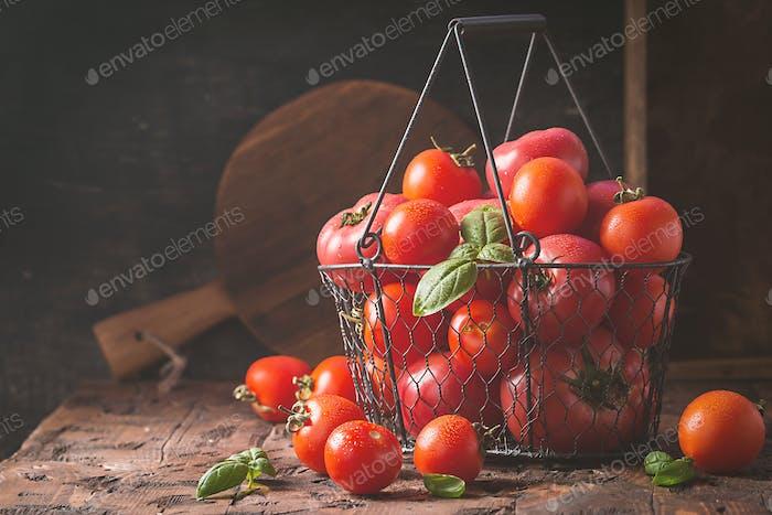frische Tomaten in einem Metallkorb