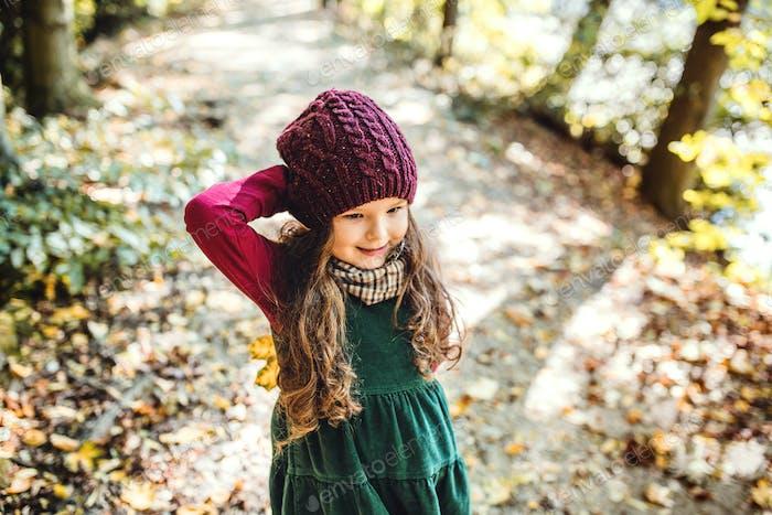 Hochwinkelansicht eines kleinen Kleinkindmädchens stehend im Wald im Herbst Natur