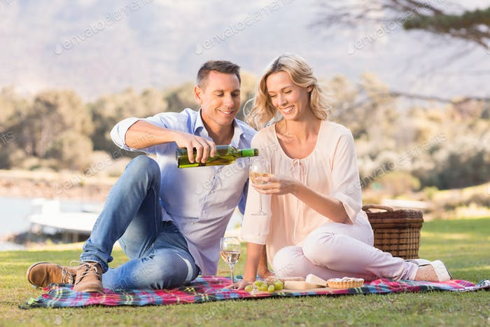 Smiling couple sitting on picnic blanket and pouring wine in glass in parkland