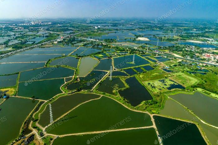 Farmland under the water in Thailand Aerial photo