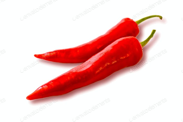 Two hot chilly pepper on the white