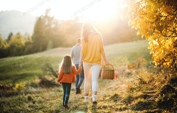 A rear view of family with small child on a walk in autumn nature