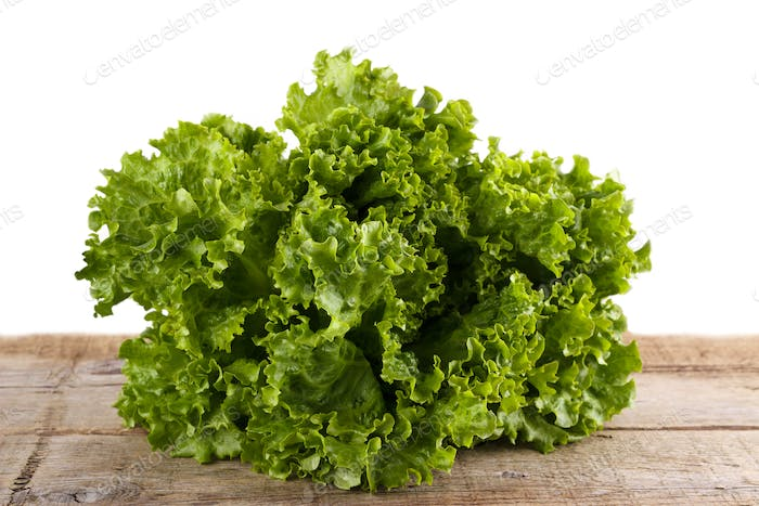Green salad lettuce