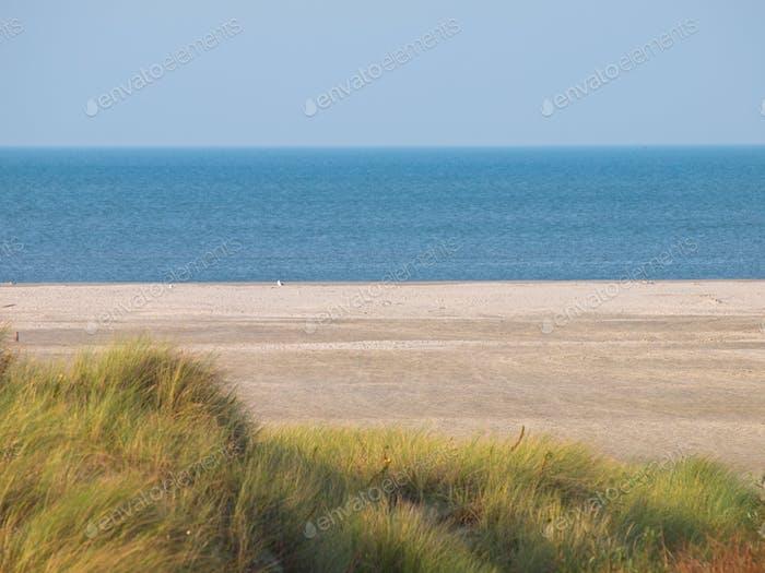 beach dune sea view