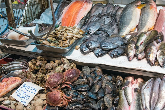 Shellfish, seafood and fish at a market