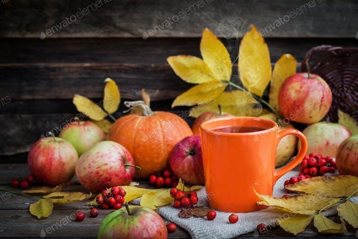 Orange mug on autumn background