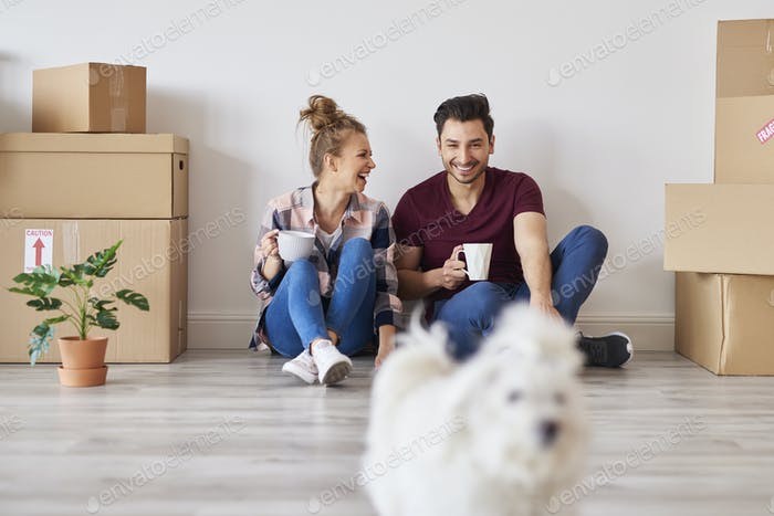 Cheerful couple with coffee cups relaxing in their new apartment