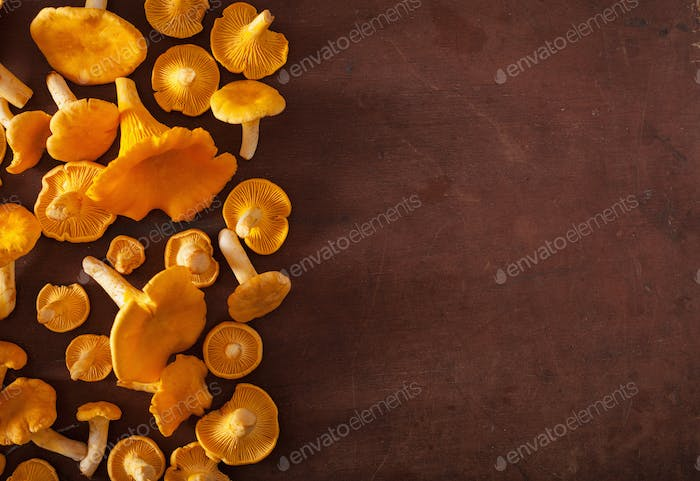 raw fresh chanterelle mushrooms flat lay on dark background