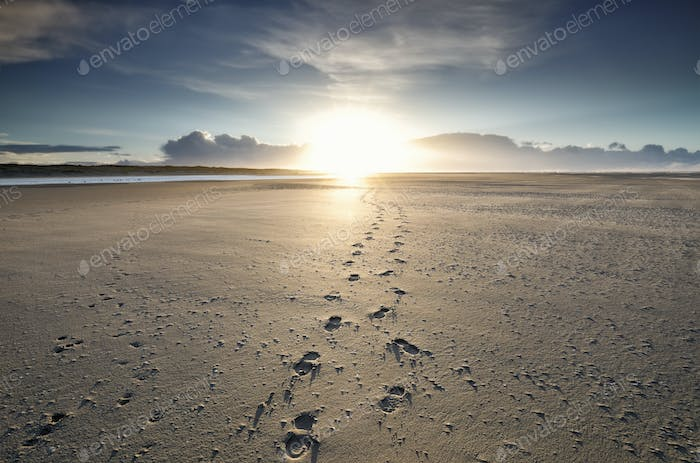 foot tracks to sunshine on horizon