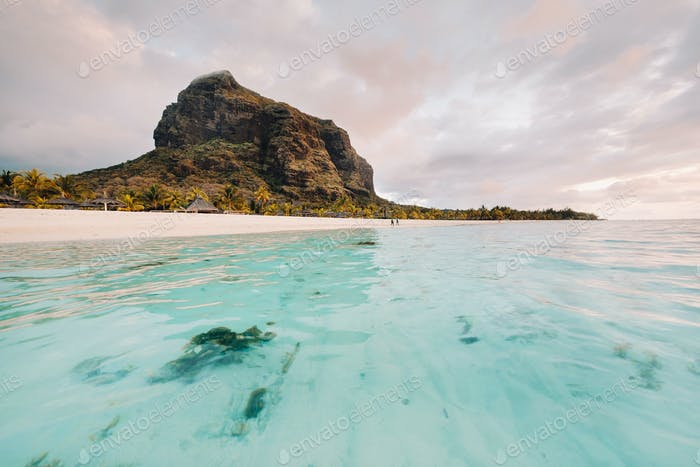 beach on Le Morne Brabant, a UNESCO world heritage site.Coral reef of the island of Mauritius