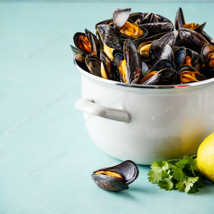 Pot of steamed mussels