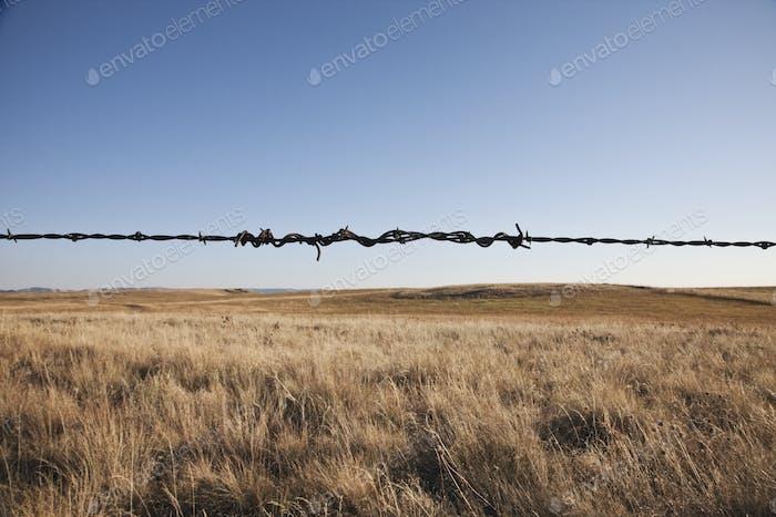 Barbed wire strand in rural landscape.
