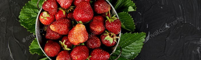 Banner of Strawberry in the bowl on a black background.