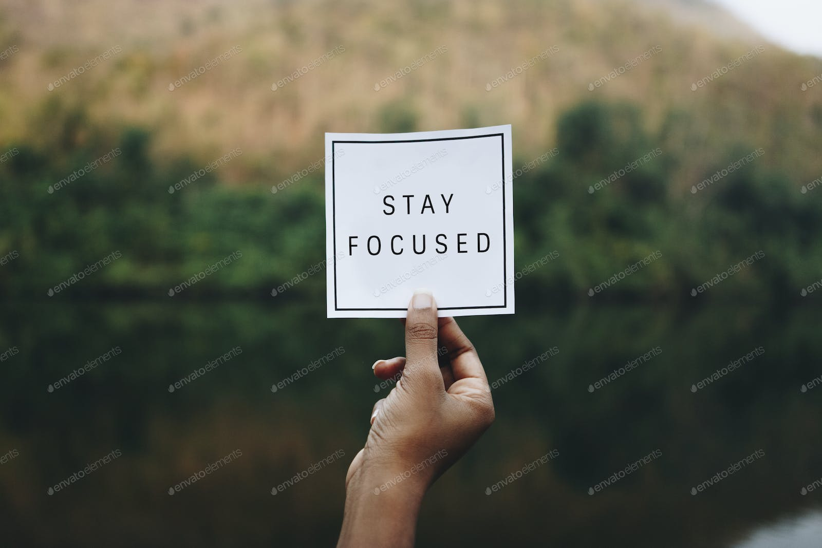 Stay focused text in nature inspirational motivation and advice ...