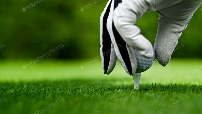 Male hands in a white glove put a golf ball
