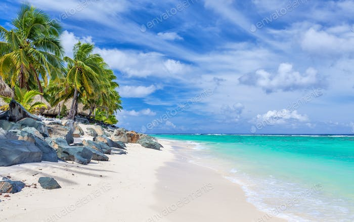 Stunning white sandy beach with rocks and palms on Rarotonga, Co
