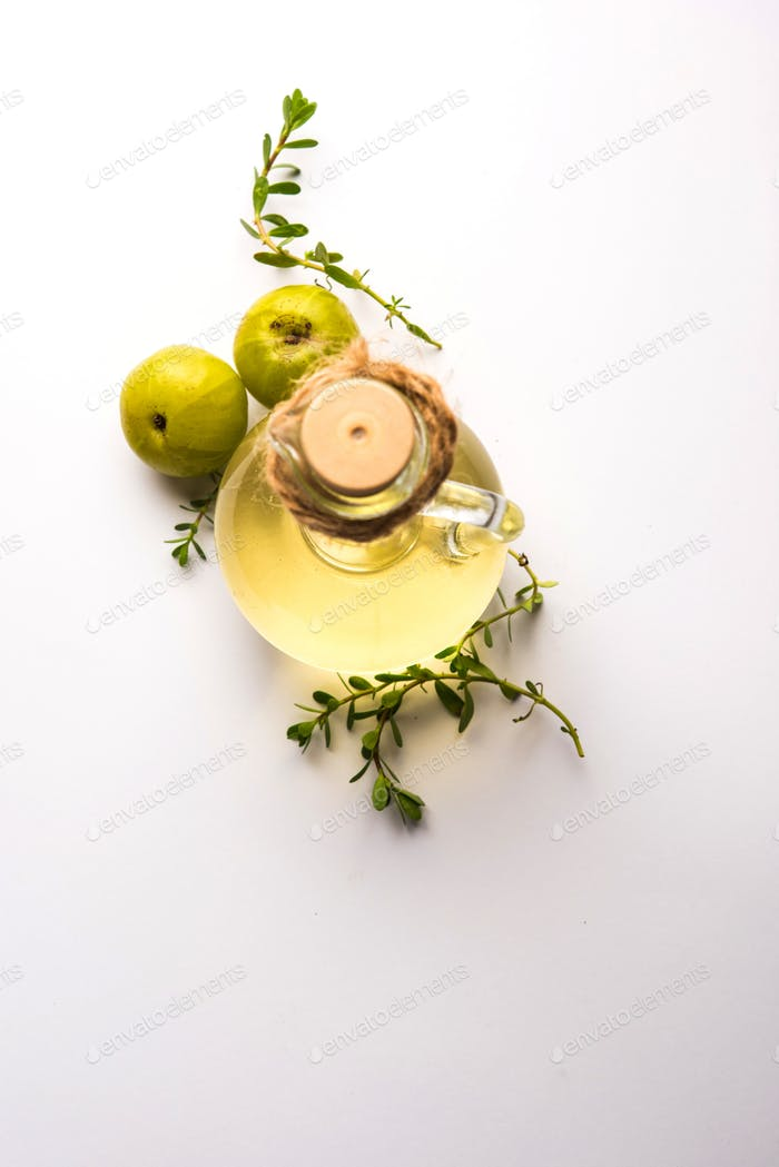 ndian gooseberry or Phyllanthus emblica extract oil or Ayurvedic Amla oil