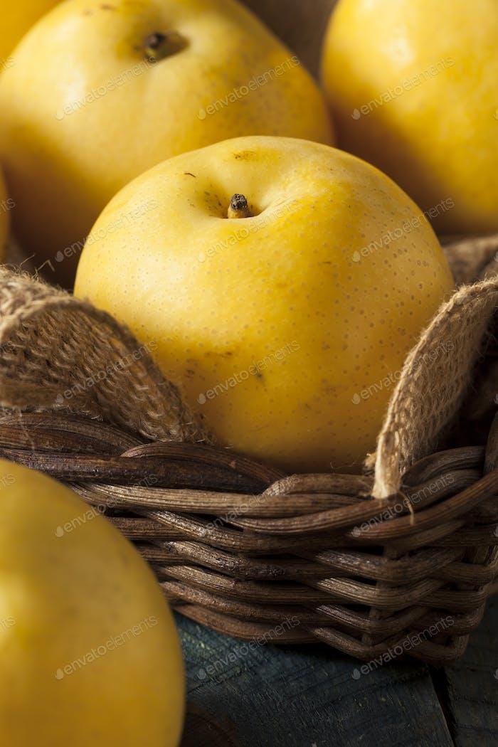 Raw Organic Yellow Asian Apple Pears