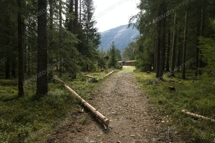 Walking path in the Setesdal, Norway