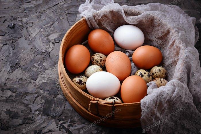 Hühner- und Wachteleier