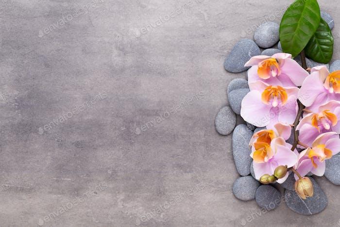 Orchidee Schönheit Blumen auf Vintage-Hintergrund. Spa-Hintergrund, Spa-Therapie, Schönheit. Spa-Behandlung.