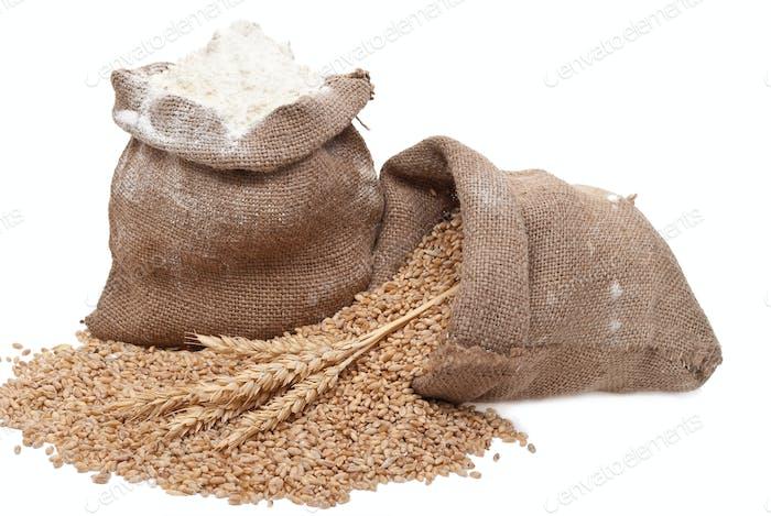 Flour and wheat grain