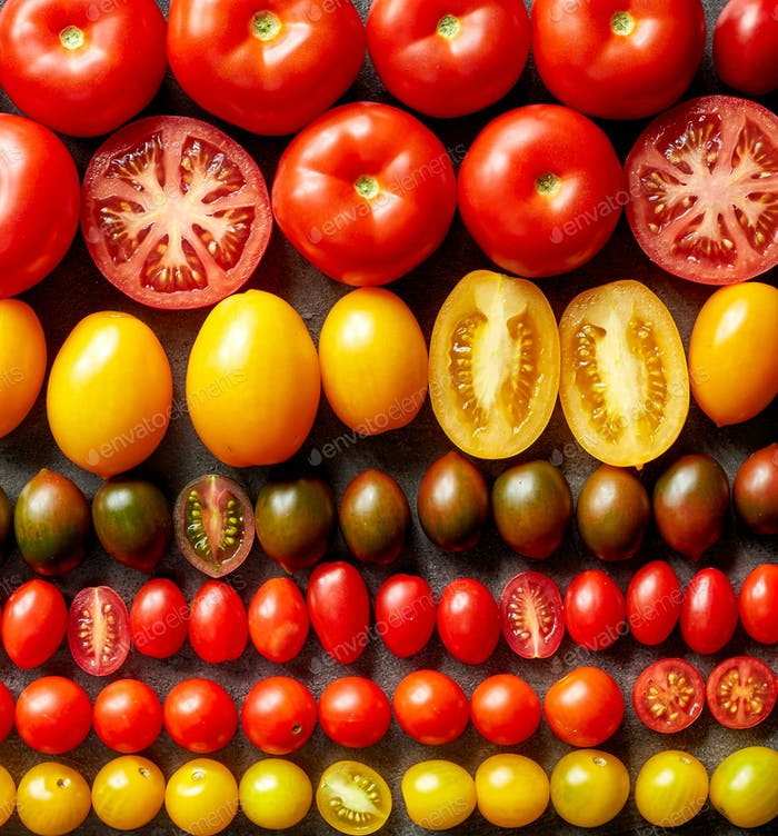 various colorful tomatoes