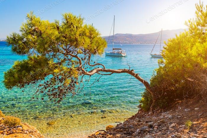Vista de un Mar mediterráneo esmeralda y transparente con yates