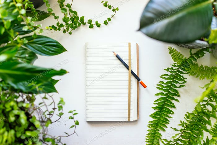 Notebook and plants
