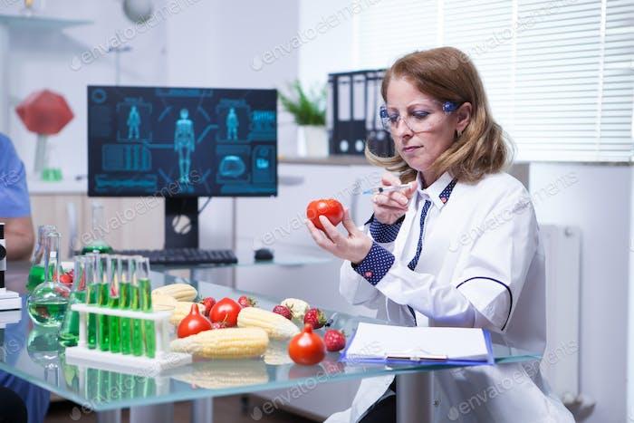 Biologe in weißem Mantel in einem Forschungslabor injiziert Flüssigkeit in eine Tomate